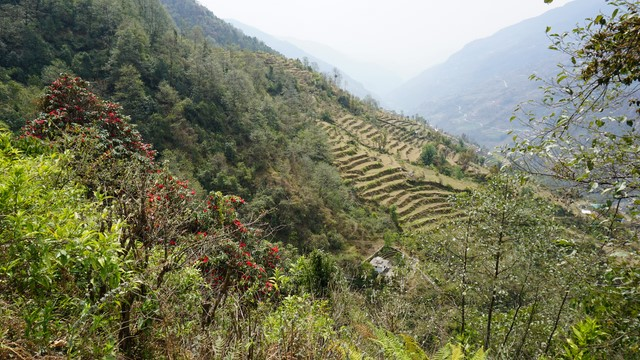 NepalAnnapurna18